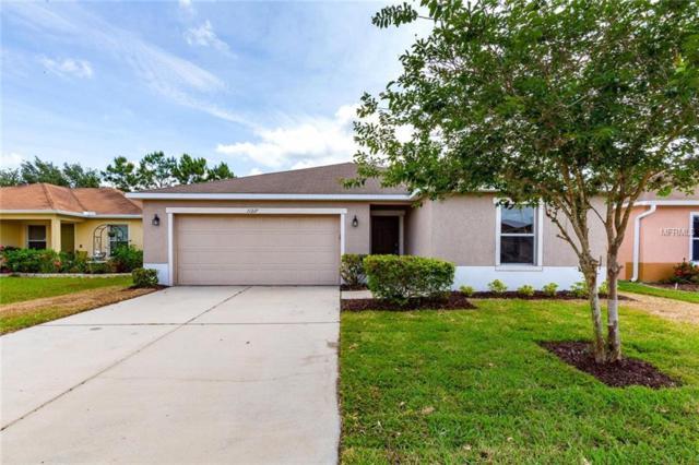 11217 Running Pine Drive, Riverview, FL 33569 (MLS #A4436004) :: Team Bohannon Keller Williams, Tampa Properties