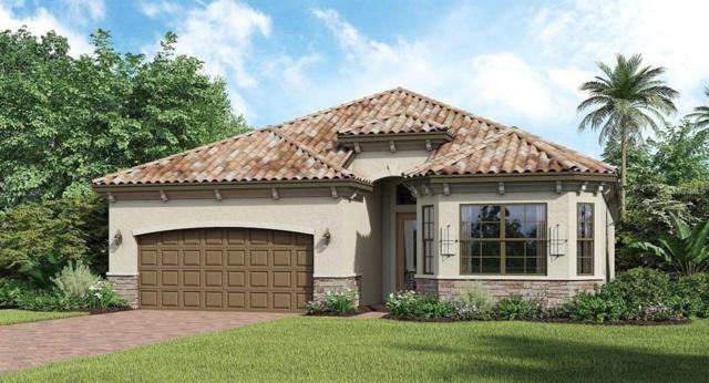 16816 Bwana Place, Bradenton, FL 34211 (MLS #A4436154) :: The Duncan Duo Team