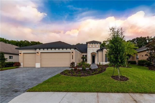 833 Honeyflower Loop, Bradenton, FL 34212 (MLS #A4436198) :: Team Bohannon Keller Williams, Tampa Properties