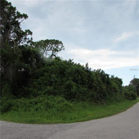 Hibiscus Road, Venice, FL 34293 (MLS #A4436366) :: The Duncan Duo Team