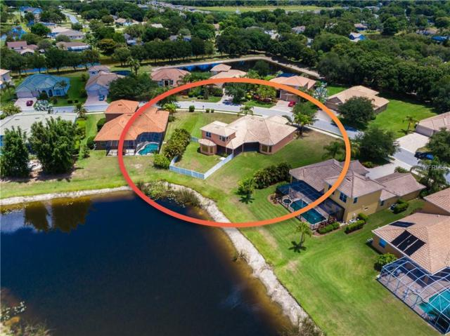 12704 Daisy Place, Bradenton, FL 34212 (MLS #A4436380) :: Mark and Joni Coulter | Better Homes and Gardens