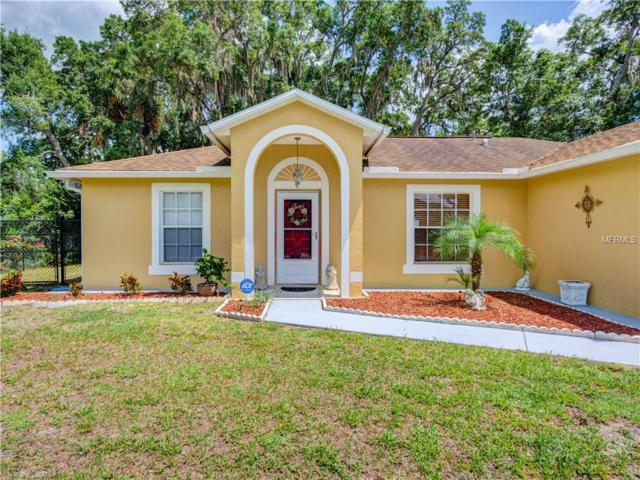 12009 Madrid Avenue, North Port, FL 34287 (MLS #A4436688) :: The Duncan Duo Team