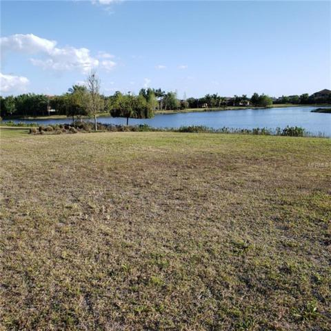 16412 Clearlake Avenue, Lakewood Ranch, FL 34202 (MLS #A4436732) :: The Duncan Duo Team
