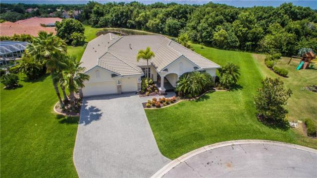 12810 Magpie Place, Bradenton, FL 34212 (MLS #A4436811) :: The Duncan Duo Team