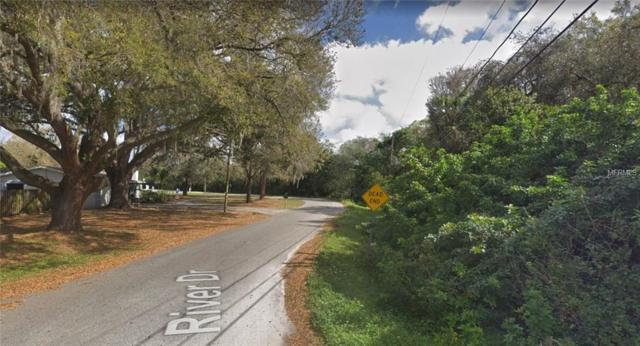 10002 River Drive, Gibsonton, FL 33534 (MLS #A4436815) :: Dalton Wade Real Estate Group