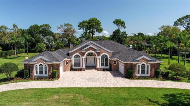 547 Austin Drive, Tarpon Springs, FL 34688 (MLS #A4436834) :: Jeff Borham & Associates at Keller Williams Realty