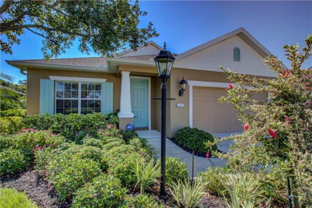 12015 Major Turner Run, Parrish, FL 34219 (MLS #A4436937) :: The Duncan Duo Team