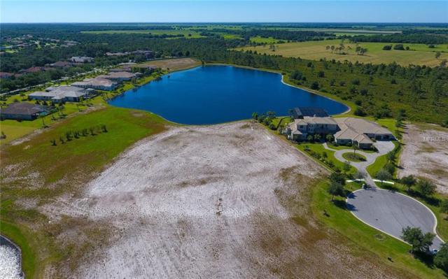 20931 Parkstone Terrace, Lakewood Ranch, FL 34202 (MLS #A4436999) :: GO Realty