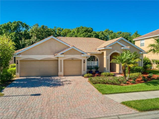 9110 Brookfield Terrace, Bradenton, FL 34212 (MLS #A4437010) :: Remax Alliance