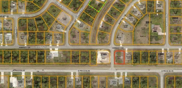 Amnesty Drive, North Port, FL 34288 (MLS #A4437112) :: KELLER WILLIAMS ELITE PARTNERS IV REALTY