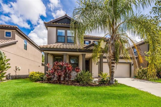 5580 Foxtail Palm Lane, Sarasota, FL 34233 (MLS #A4437272) :: Sarasota Home Specialists
