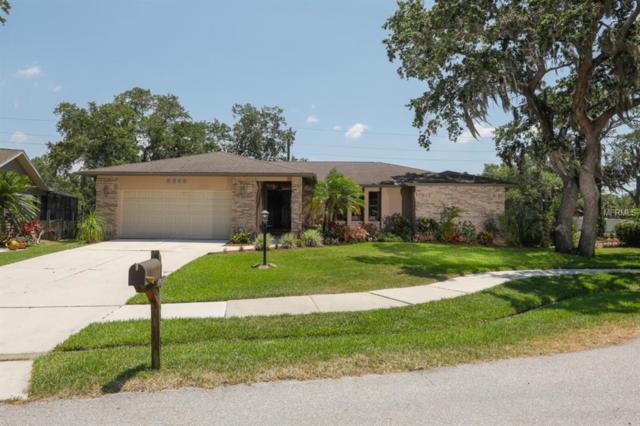 5348 Bent Oak Drive, Sarasota, FL 34232 (MLS #A4437368) :: Griffin Group