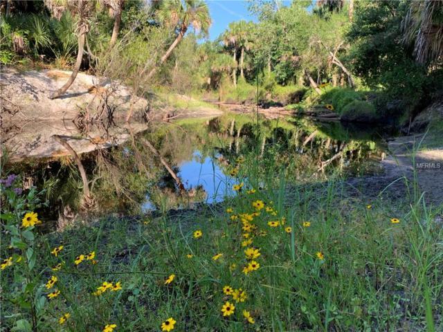 12845 River Road, Myakka City, FL 34251 (MLS #A4437716) :: Cartwright Realty