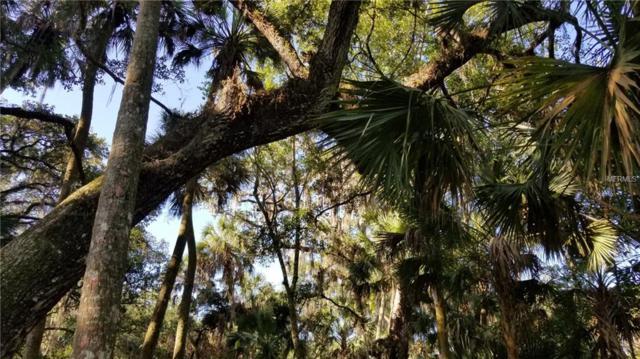 Letitia Lane, Sarasota, FL 34241 (MLS #A4437776) :: GO Realty