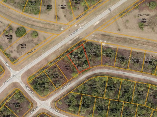 Antique Circle, North Port, FL 34288 (MLS #A4437903) :: The Duncan Duo Team