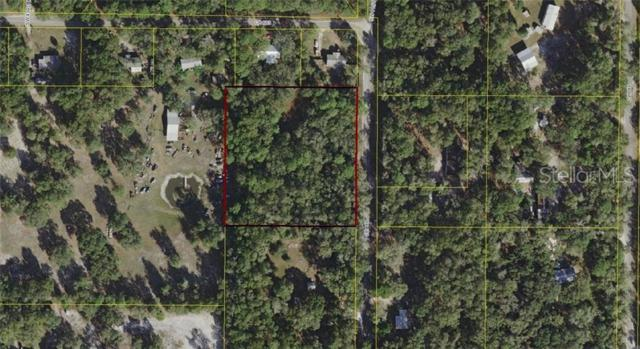 11800 County Road 683, Webster, FL 33597 (MLS #A4437923) :: The Duncan Duo Team