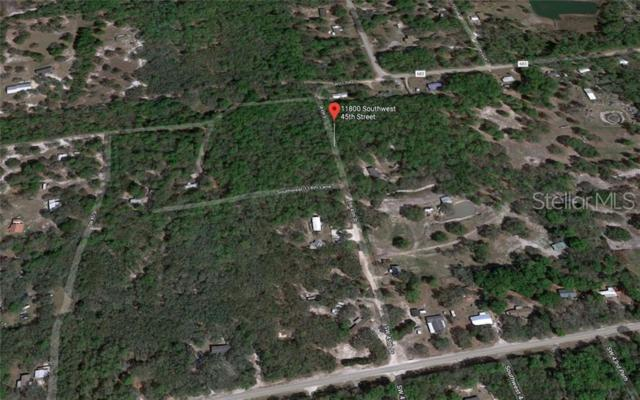 11800 SW 45TH Street, Webster, FL 33597 (MLS #A4438363) :: The Duncan Duo Team