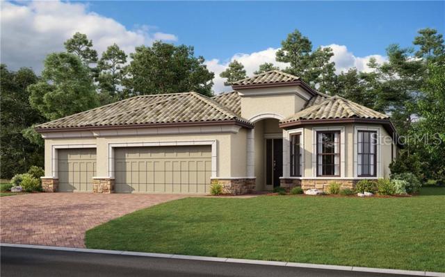 20109 Umbria Hill Drive, Tampa, FL 33647 (MLS #A4438382) :: Team Bohannon Keller Williams, Tampa Properties