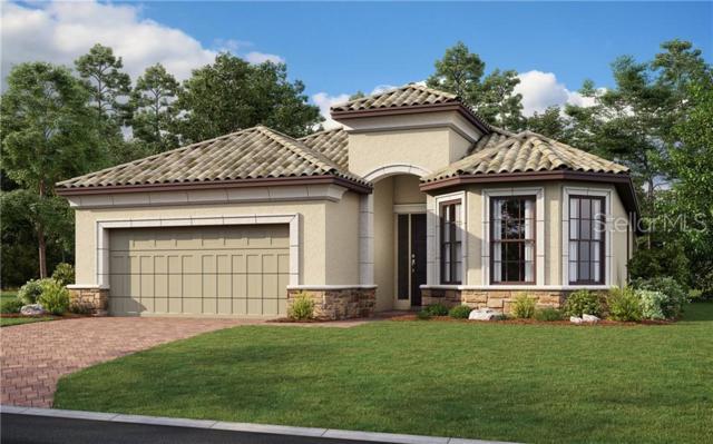 20145 Umbria Hill Drive, Tampa, FL 33647 (MLS #A4438390) :: Team Bohannon Keller Williams, Tampa Properties