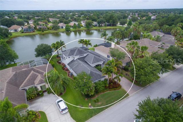 13818 Nighthawk Terrace, Lakewood Ranch, FL 34202 (MLS #A4438487) :: McConnell and Associates