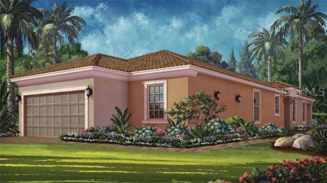 11214 Callisia Drive, Odessa, FL 33556 (MLS #A4438534) :: The Duncan Duo Team
