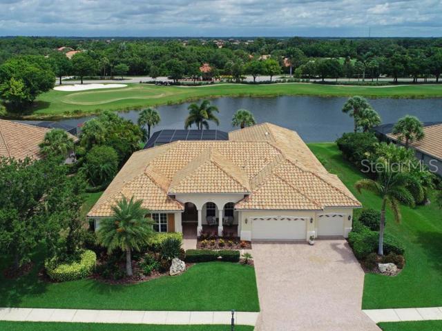 10619 Restoration Terrace, Bradenton, FL 34212 (MLS #A4438594) :: Team 54