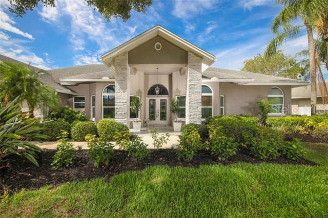 3807 Little Country Road, Parrish, FL 34219 (MLS #A4438601) :: The Duncan Duo Team
