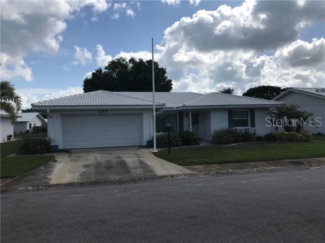 1215 Oakleaf Boulevard, Bradenton, FL 34208 (MLS #A4438612) :: Paolini Properties Group