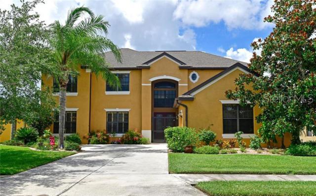 12620 20TH Street E, Parrish, FL 34219 (MLS #A4438644) :: Advanta Realty