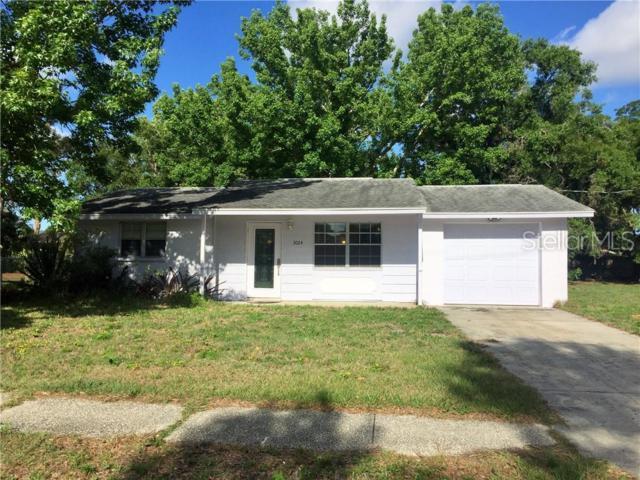 3024 Java Plum Avenue, Sarasota, FL 34232 (MLS #A4438892) :: Griffin Group
