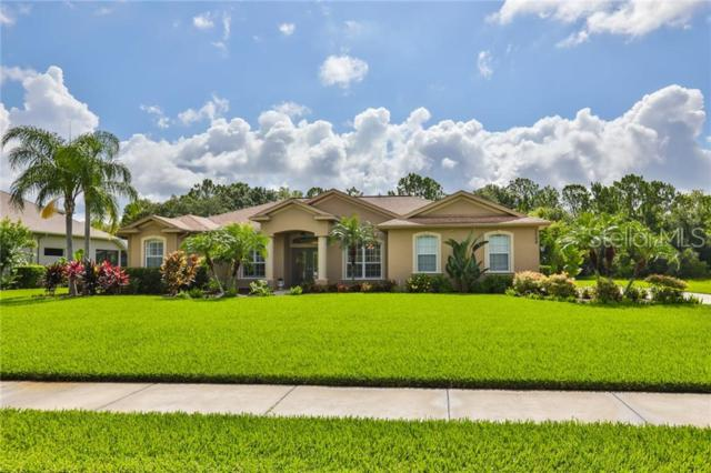 2508 155TH Avenue E, Parrish, FL 34219 (MLS #A4439069) :: Gate Arty & the Group - Keller Williams Realty