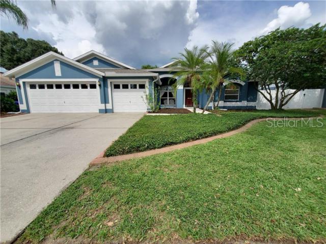 4510 Gentrice Drive, Valrico, FL 33596 (MLS #A4439310) :: Dalton Wade Real Estate Group