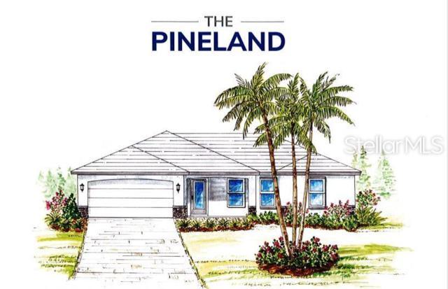 23472 Mcnally Avenue, Port Charlotte, FL 33980 (MLS #A4439549) :: The Duncan Duo Team