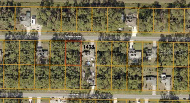 0956143832 Belladonna Avenue, North Port, FL 34286 (MLS #A4439662) :: NewHomePrograms.com LLC