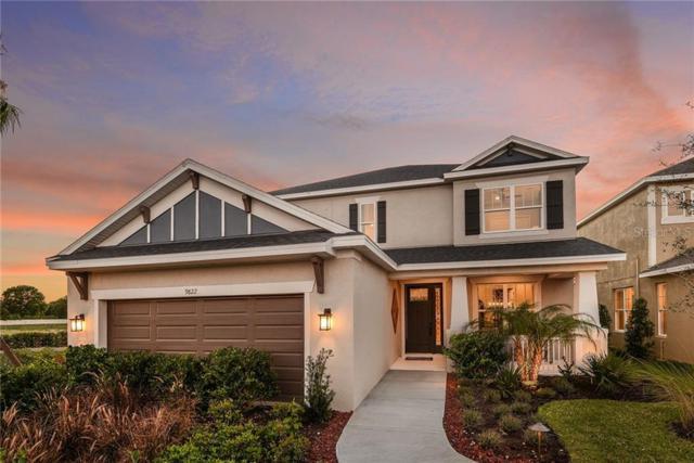 9822 Stillchase Street, Tampa, FL 33625 (MLS #A4439871) :: Bridge Realty Group