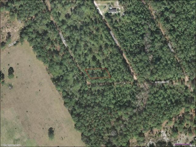 No Address Avail, Satsuma, FL 32189 (MLS #A4439913) :: Heckler Realty