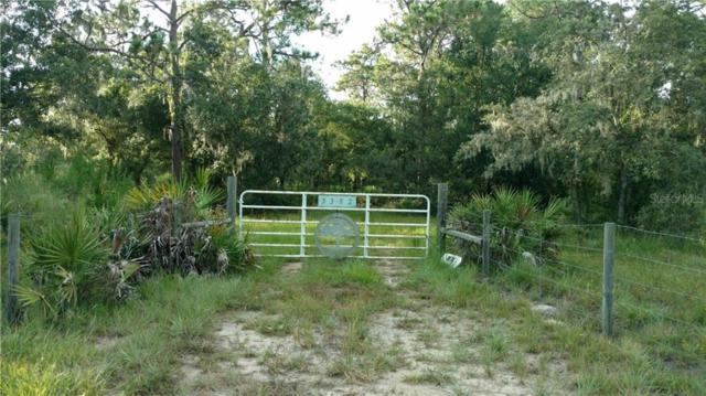 5382 Wauchula Road, Myakka City, FL 34251 (MLS #A4440062) :: Cartwright Realty