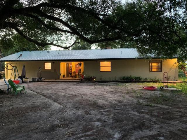 558 Shaw Road, Wauchula, FL 33873 (MLS #A4440119) :: Ideal Florida Real Estate
