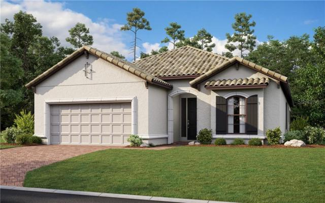 5629 Piccolo Street, Nokomis, FL 34275 (MLS #A4440326) :: Sarasota Home Specialists