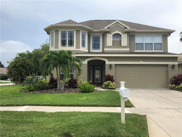 4866 W Breeze Circle, Palm Harbor, FL 34683 (MLS #A4440566) :: Lovitch Realty Group, LLC