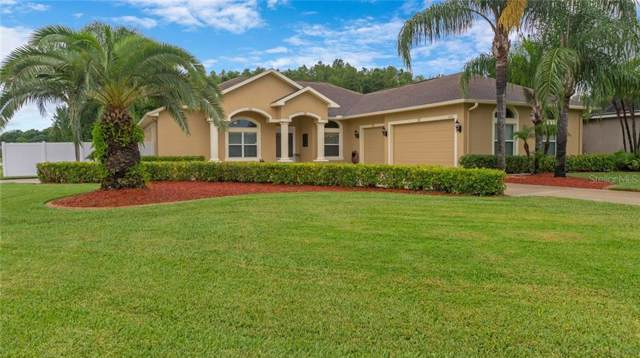 6421 Alcester Drive, New Port Richey, FL 34655 (MLS #A4440789) :: Griffin Group