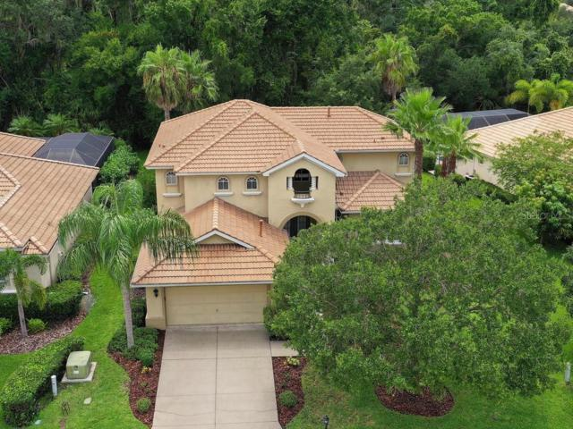 9712 Discovery Terrace, Bradenton, FL 34212 (MLS #A4440794) :: Team TLC | Mihara & Associates