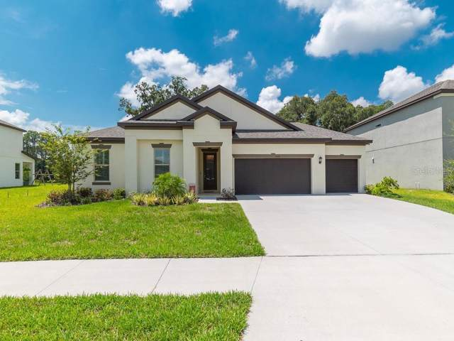 13034 Bliss Loop, Lakewood Ranch, FL 34211 (MLS #A4440832) :: The Duncan Duo Team