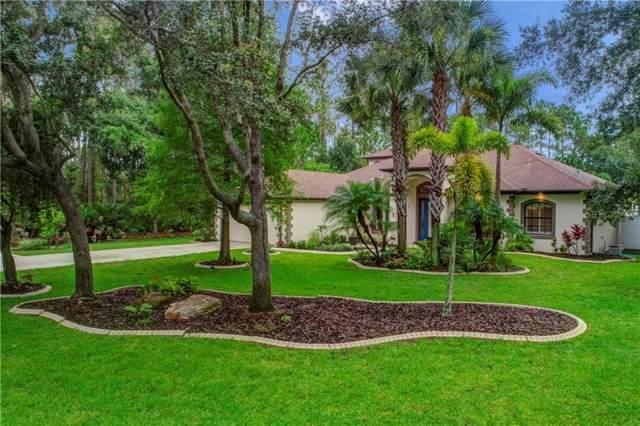 9511 59TH Avenue E, Bradenton, FL 34202 (MLS #A4440895) :: Team Bohannon Keller Williams, Tampa Properties
