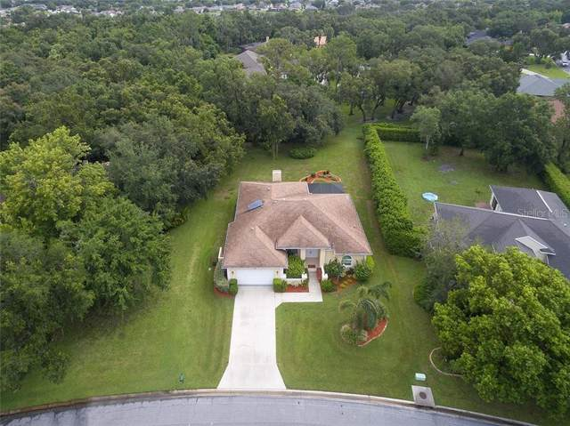 2909 E Wilderness Boulevard, Parrish, FL 34219 (MLS #A4441201) :: Griffin Group