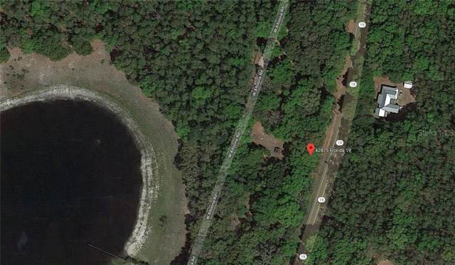 State Road 19, Altoona, FL 32702 (MLS #A4441251) :: Homepride Realty Services