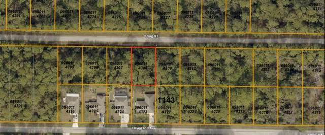 Snug Street, North Port, FL 34286 (MLS #A4441404) :: White Sands Realty Group