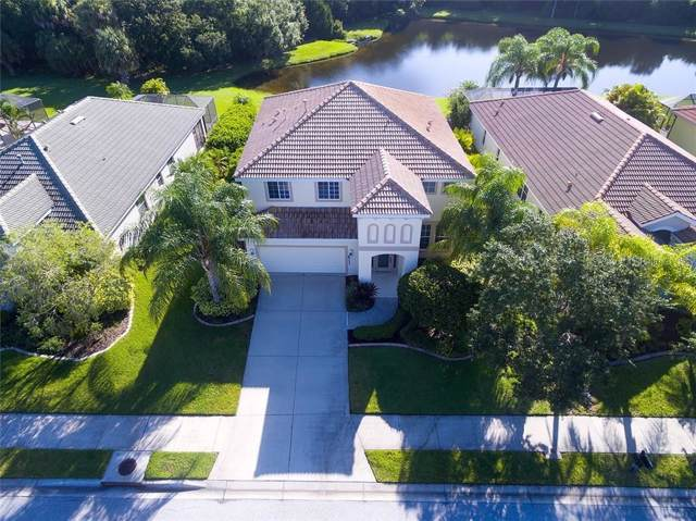 8713 Stone Harbour Loop, Bradenton, FL 34212 (MLS #A4441521) :: Team Bohannon Keller Williams, Tampa Properties