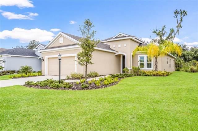 11020 Blue Magnolia Lane, Parrish, FL 34219 (MLS #A4441690) :: EXIT King Realty
