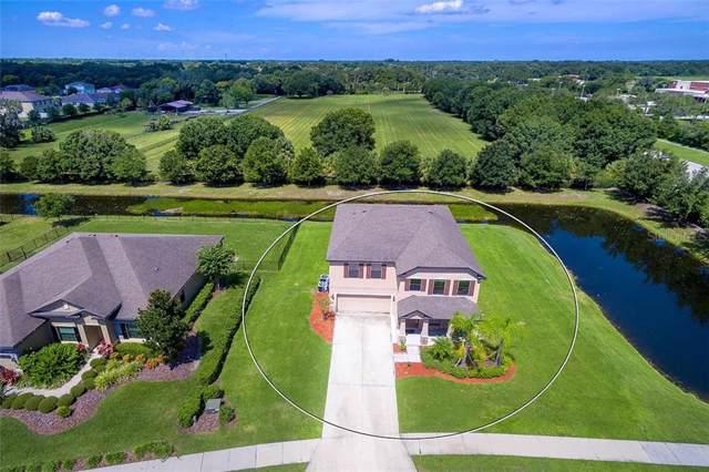 6803 75TH Avenue E, Palmetto, FL 34221 (MLS #A4442205) :: Bustamante Real Estate